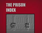 Section 2 Incarceration and Its Consequences - Prison Index