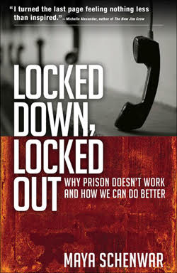 book cover for Locked Down, Locked Out