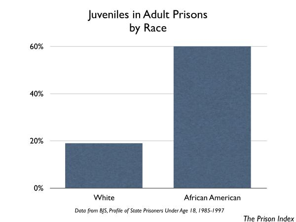 Of the juveniles in adult prisons, 60% are African American and 19% are White.